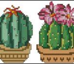 Cross stitch cacti 5