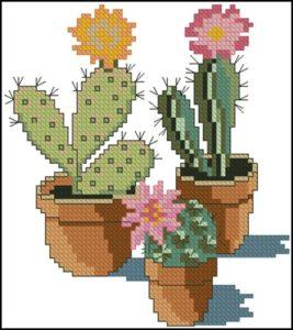 Cross stitch cacti 6