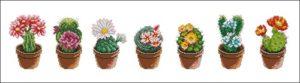 Семь кактусов в ряд