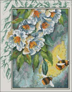 Цветы и шмели
