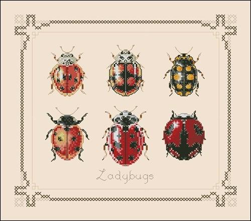 Mini ladybugs 1
