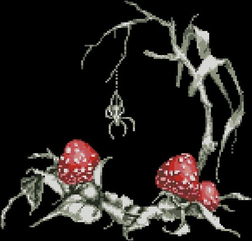Toadstools and spider