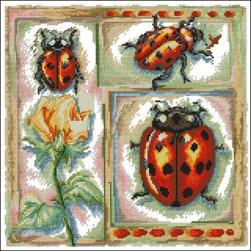 EPX 3638 Ladybird