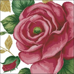 41103 Rose Pink