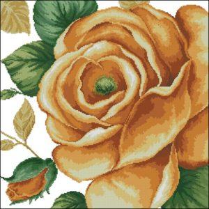 41103 Rose Yellow