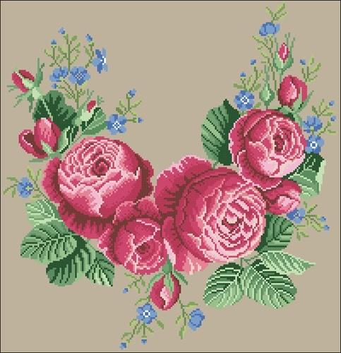 Polstar kvety