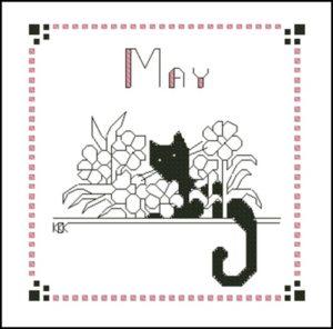 May – Черная кошка