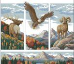 Rocky Mountain Beauty_13643