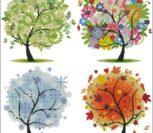 Деревья (сезоны)