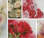Розы для любимых - 5
