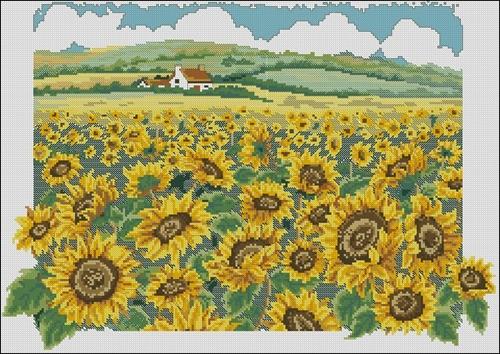 Вышивка поля с подсолнухами