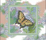 Butterfly Whisper