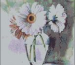 Pearl White Gerbera