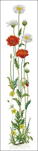 Eva Rosenstand - 13211 - Poppy