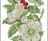 Весенне белые цветы