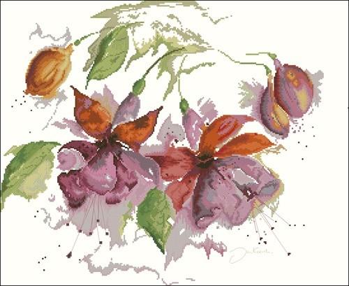 Fuchsia in Watercolour
