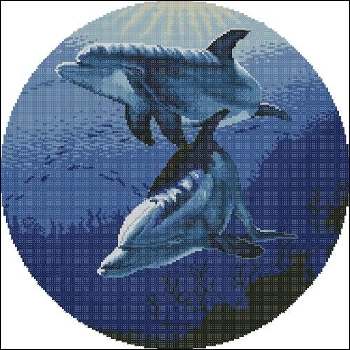 Дельфины в голубом круге