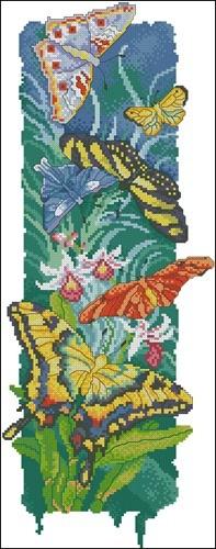 Island Butterflies