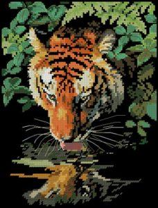 Tiger Reflection