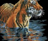 Tiger Chilling