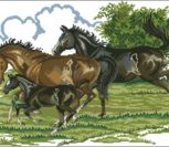 Семья (лошади)