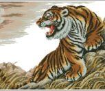Tiger at Dusk