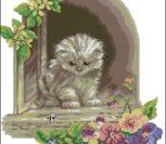Котёнок в окне