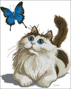 Кошка с бабочкой играет