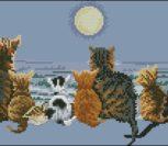 Cats Chorus