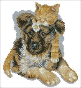 Друзья (кошка и собака)