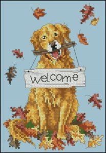 Welcome Dog