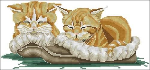 Сонные кошки