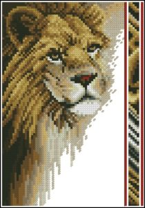 Wildlife Series - Lion