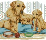 Golden Labrador Family