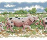 Three Little Pigs Farmyards Friends