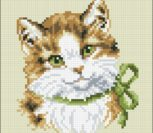 Green Eyed Cat Cushion