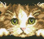 Kitten Rectangular Cushion