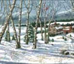 Birch View