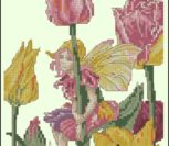 Фея тюльпанов