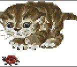 Котенок с букашкой играет