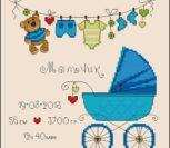 Метрика для новорожденных с голубой коляской