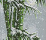BG Bamboo