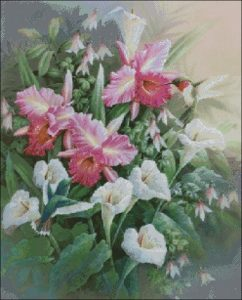 Цветы и колибри