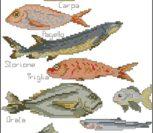 Fish for Fishing
