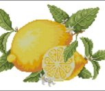 Summer Fruits - Lemons