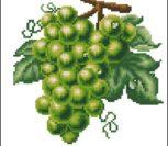 Виноград (зеленый)