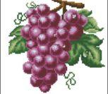 Виноград (фиолетовый)