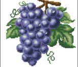Виноград (синий)