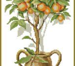 Красивое апельсиновое дерево