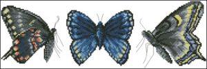 Kolekcja z Motylkami